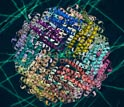 Image of the crystal structure of the protein ferritin, which fuels diatom growth in the oceans.