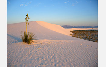 Photo of White Sands, New Mexico.
