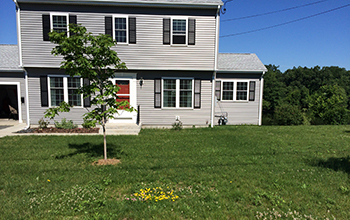 Unmowed lawn dotted and family home