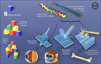 Illustration showing how the arrangement of molecular building blocks yields novel materials.