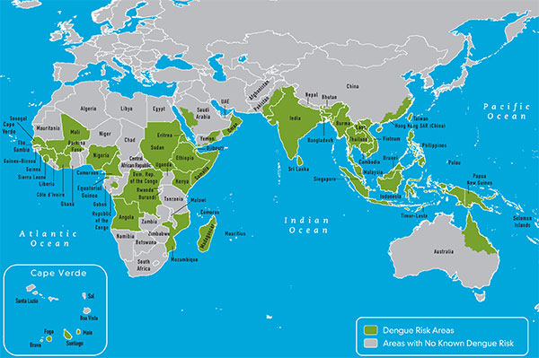 Multimedia Gallery Map showing where dengue has occurred in the – Eastern Map