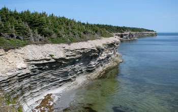 Photo of a coastal outcrop exposure of Late Ordovician Ellis Bay Formation.
