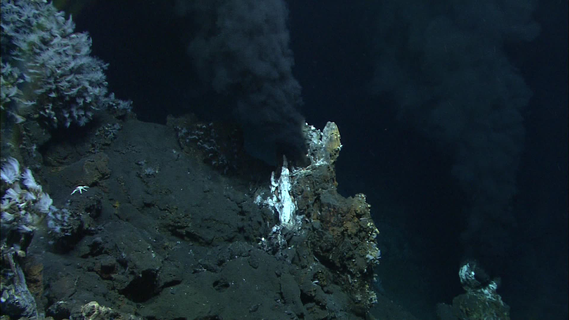 Sea hydrothermal vents