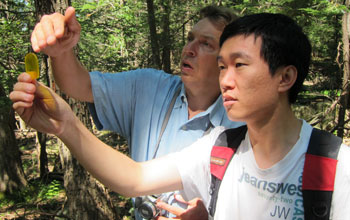 Researchers demonstrate the use of wedge prism at Black Rock Forest.