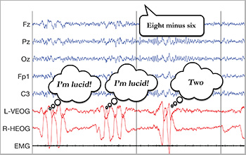 a recording of electrical signals from a sleeping participant's mind and eyes