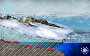 When a glacier thins, its weight slides faster into the ocean.