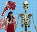 woman talking next to a 3-d image of skeleton and muscles