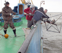 Photo of scientists deploying an apparatus to take sonar measurements from the seafloor.
