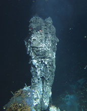 Photo of a hydrothermal sulfide spire on the Juan de Fuca Ridge in the Pacific Ocean.