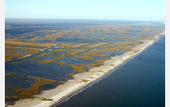 Aerial photo of Gulf wetlands.