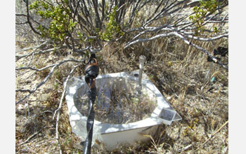 A close-up of a nitrogen measurement lid under a shrub common in the Mojave Desert.