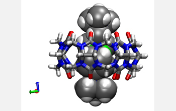 Computer image of the CB[7] Ferrocene molecular container.