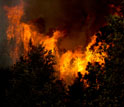 Wild fire in Colorado's huge High Park fire