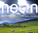 Graphic illustration showing the NEON logo and a grreen field