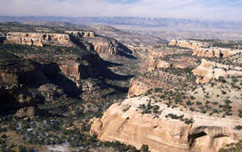 Photo of Rattlesnake Canyon Wildlife Area in New Mexico.