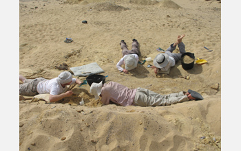 Paleontologists excavating Birket Qarun Locality 2, which produced the Nosmips fossils.