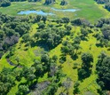 Through an NSF Dimensions of Biodiversity grant, scientists are studying a Minnesota oak savanna.