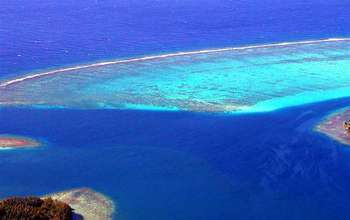 aerial view of NSF's Mo'orea Coral Reef Long-Term Ecological Research site