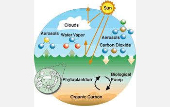 Illustration showing chemical exchange between the atmosphere and ocean.