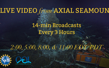 Watch a video showing Axial Seamount in the Pacific Ocean, via the Ocean Observatories Initiative.