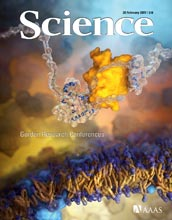 Cover of the February 20, 2009 edition of the journal Science.