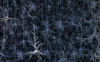 An activated neuron in a tangle of neurons.