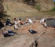 Paleontologists at work in Tanzania on research that led to the find of the new carnivore species.