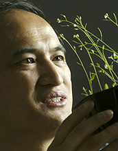 Photo of Zhen-Ming Pei and a mustard plant