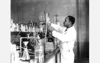 Young chemist working in lab