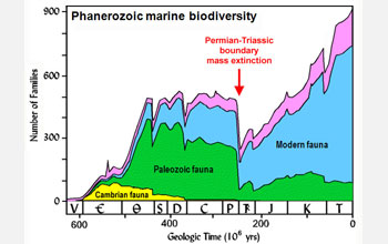 Graph of Phanerozoic marine biodiversity plotting number of families versus geolgoic time.