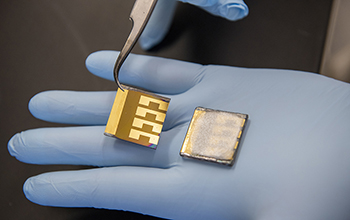 two laboratory solar cell samples