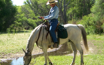 A citizen scientist on horseback collects data along the San Pedro River in Arizona.