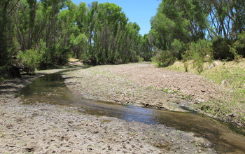 The San Pedro River looks much different when water courses through it.