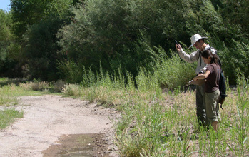 Citizen scientists record the end of a wet section of the San Pedro River.
