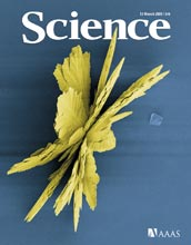 Cover of March 13, 2009 issue of Science magazine.