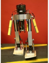 The MIT passive-dynamics powered robot.