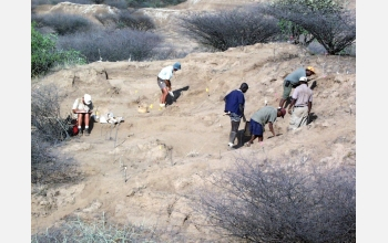 Re-excavation of the Omo 1 site by the research team.
