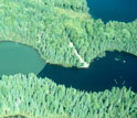 Image showing a lake with largemouth bass on right and without largemouth bass on left.
