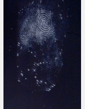 This thumbprint appeared after researchers sprayed it with a super glue.