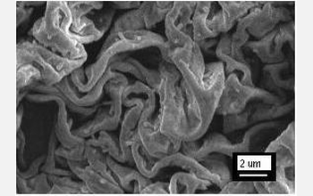 "Researchers used the chemical reaction to create ""tortellini-like"" polymer films."