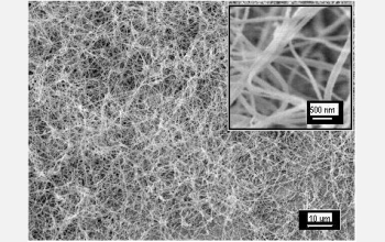 The researchers grew these polymer nanofibers using a synthetic starting mixture.