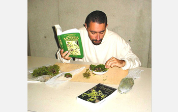 Photo of a Cedar Creek inmate and researcher in the Moss-in-Prisons project studying mosses.