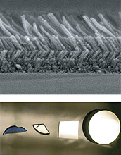 Layers of silica nanorods look like shag carpet when viewed with a scanning electron microscope.