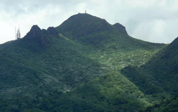 El Yunque and East Peak covered with forest