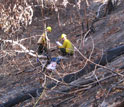 Two researchers in the forest conducting a post-fire survey