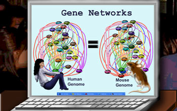 Gene networks cartoon