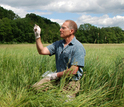 Rick Ostfeld holds a white-footed mouse in a Lyme disease hotspot: N.Y.'s Hudson Valley.