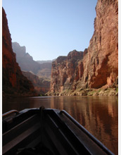 Photo of scientist John Sabo navigating a Grand Canyon study site with rapids in the background.