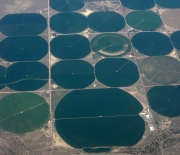 This aerial photo was taken east of Denver, Colorado, above a region dense with irrigation systems.