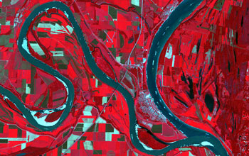 A satellite view of the Mississippi River shows a mosaic of riverbank land-use patterns.
